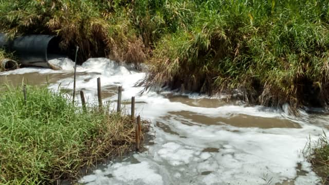 Dua Pabrik Ketahuan Buang Limbah ke Sungai Citarum