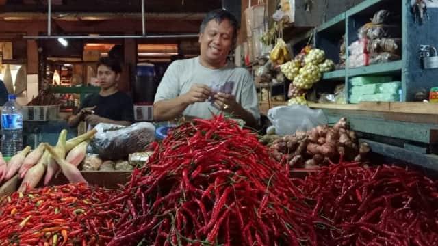 Varietas Benih Unggul Cabai Penting Bagi Perekonomian Indonesia