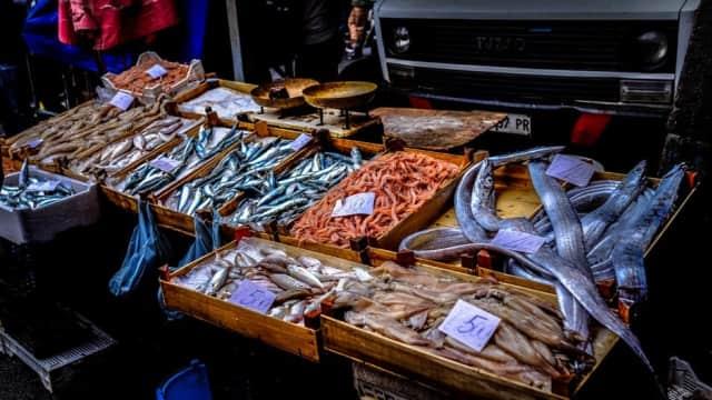 Ajarkan Anak Gemar Makan Ikan dari Sekarang, Bikin Cerdas!