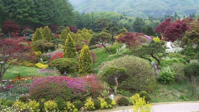 5 Lokasi Syuting Drama Korea yang Bisa Kamu Kunjungi di Gyeonggi-do
