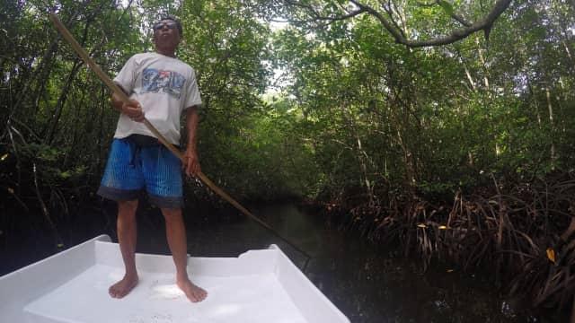 Kisah Mantan Petani Rumput Laut yang Kini jadi Pemandu Wisata Mangrove