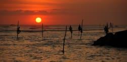 Penipuan di Balik Keunikan Nelayan di Sri Lanka