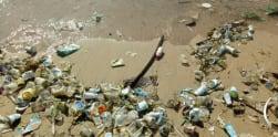 Pantai di Bali Kembali Dipenuhi Sampah